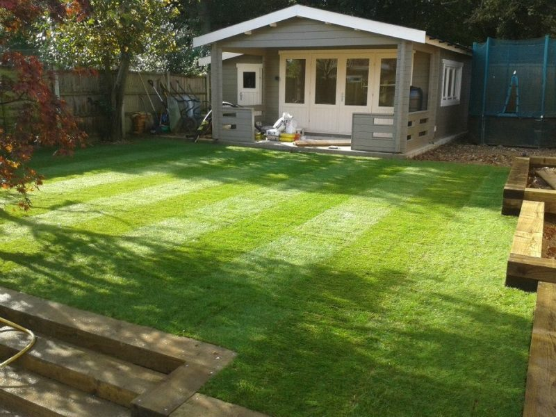 new lawn and beds
